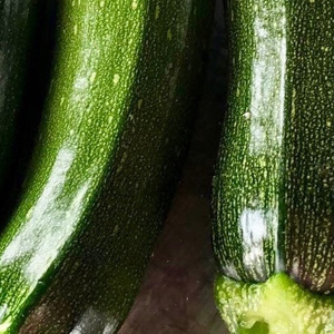 pick your own courgattes