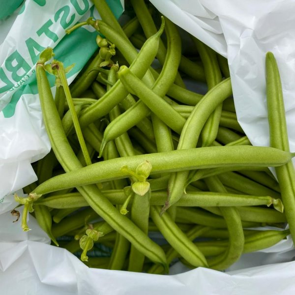 pick your won french beans
